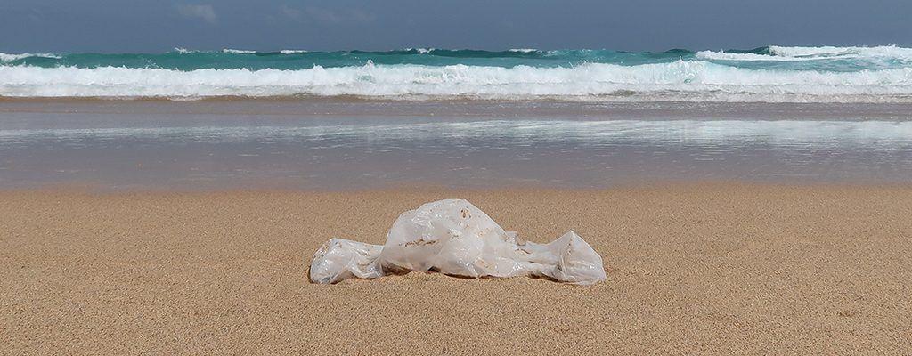 basura playa-plastico mar-bolsa