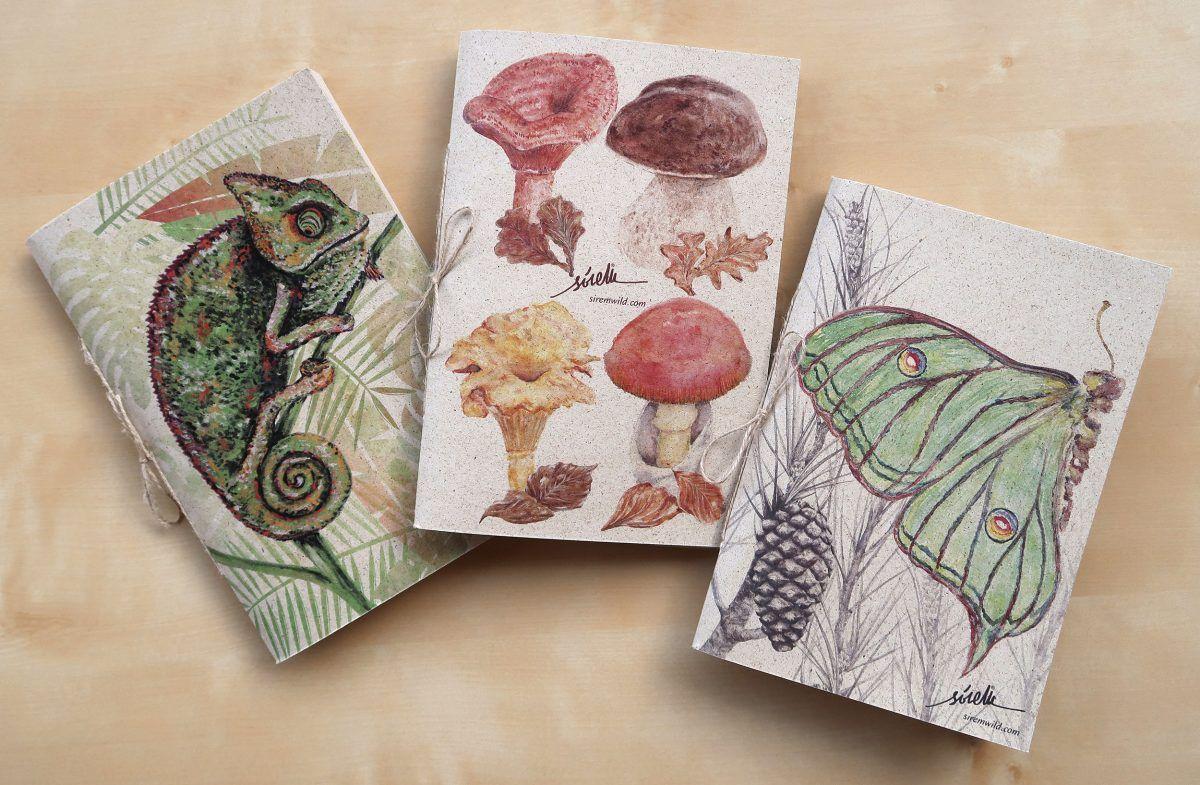 libretas animales camaleon mariposa setas-sirem wild