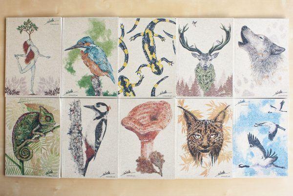 libretas animales naturaleza-sirem wild-lobo-ciervo-lince-grullas-picapinos-camaleon-niscalo-martin pescador-salamandra-mujer-cuaderno papel reciclado
