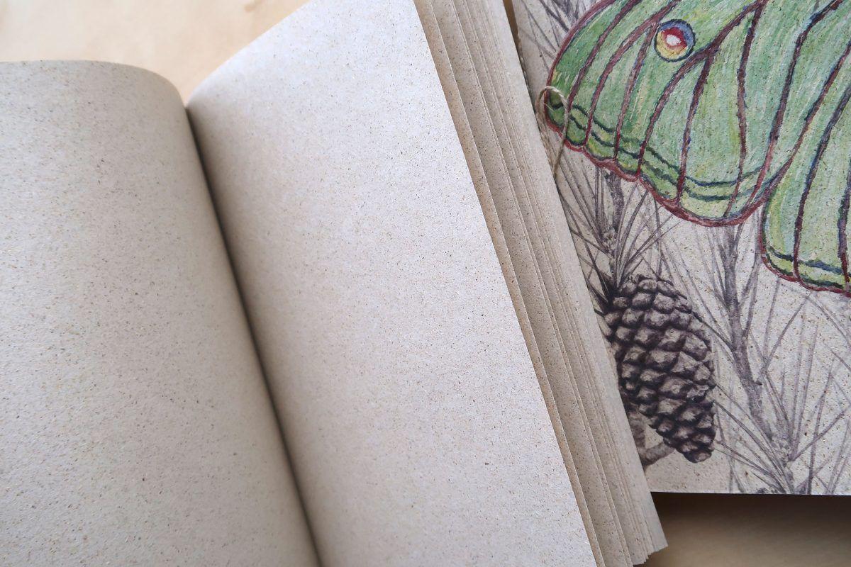 libretas papel hierba reciclado-sirem wild