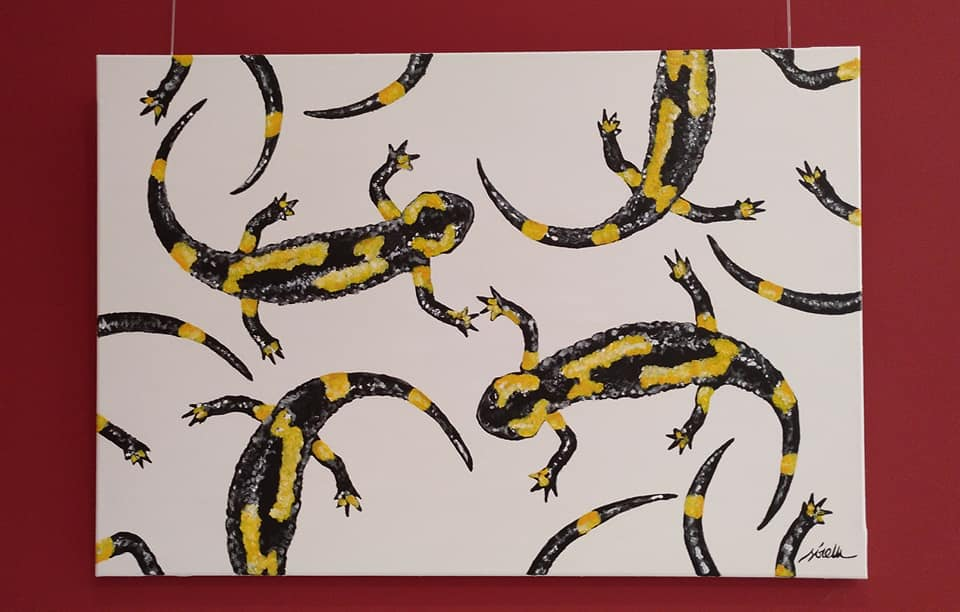 salamandras-salamandra comun-sirem wild-pintura