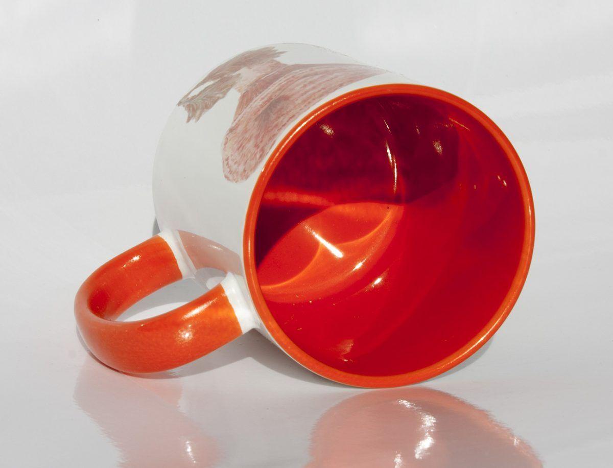 taza-setas-niscalo-boletus-trompeta de la muerte-sirem wild-naranja