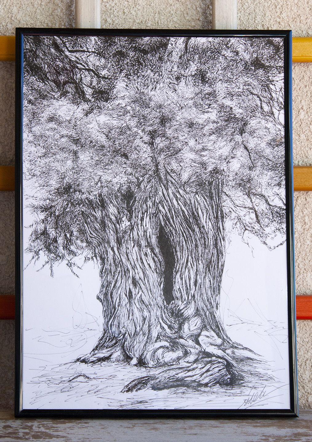 dibujo arbol Sabina Gorda ilustracion boligrafo-sirem wild
