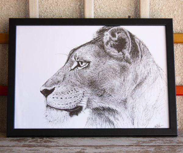 dibujo leona ilustracion boligrafo-sirem wild