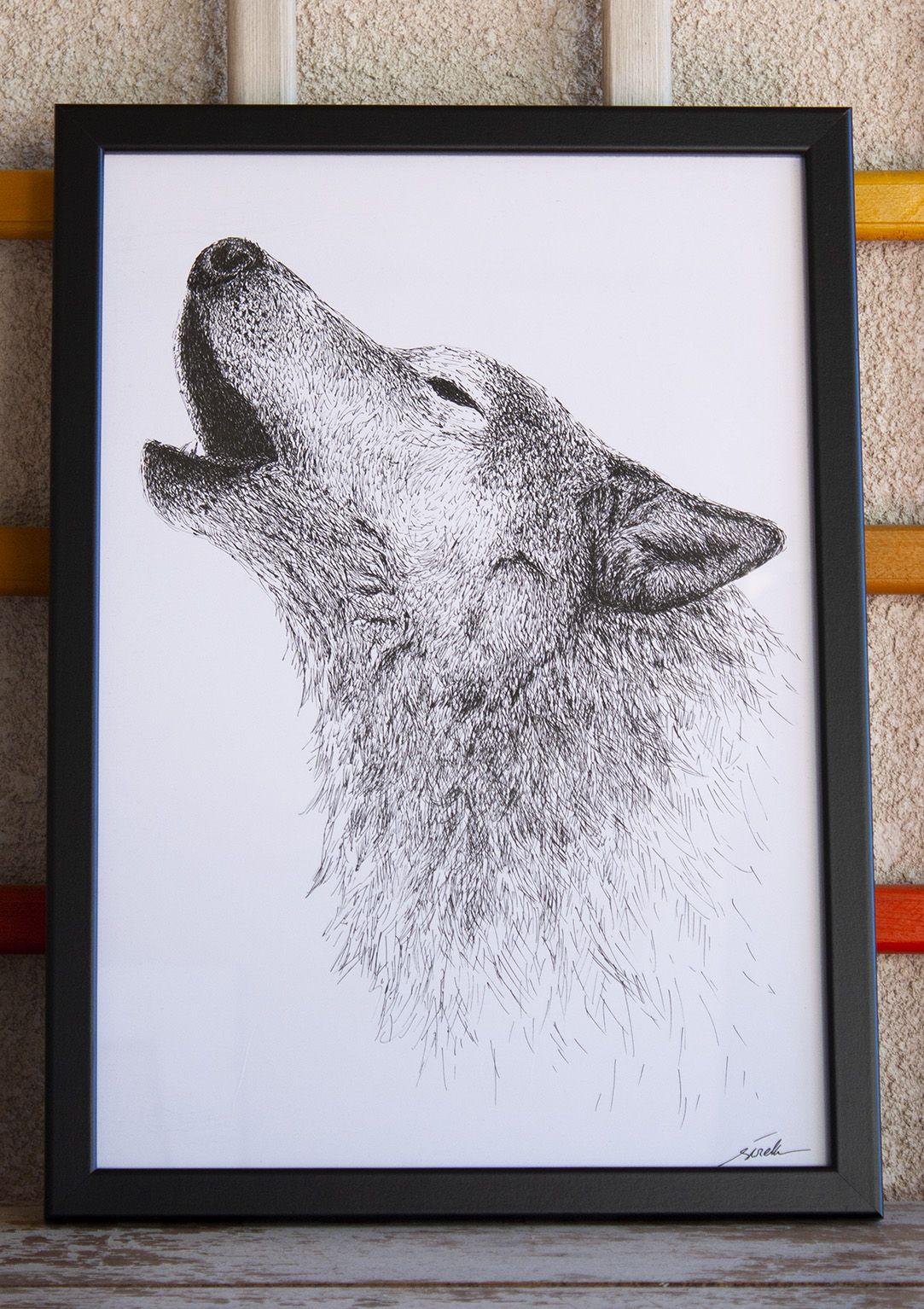 dibujo lobo ilustracion boligrafo-sirem wild