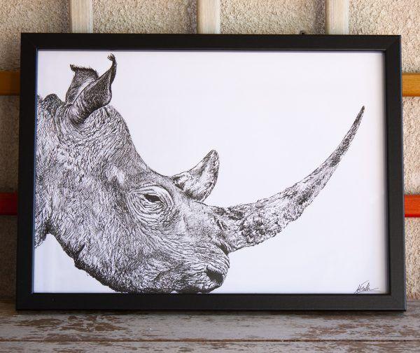 dibujo rinoceronte ilustracion boligrafo-sirem wild