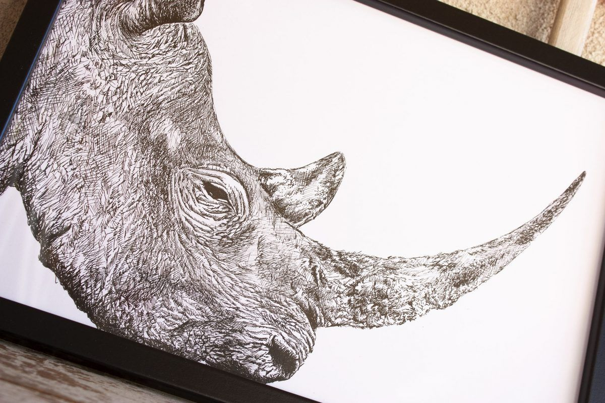 dibujo rinoceronte ilustracion-sirem wild
